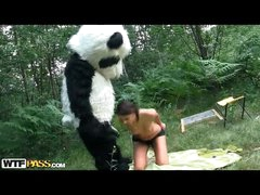 Slender gal takes large sextoy from many in bear suit