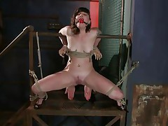 Here's charming Sahara Rain, a cute wench with small mambos and a very constricted cunt. Sahara has been fastened by that wooden structure, ball gagged and her thighs fastened wide open. I start rubbing her snatch with a vibrator and that honey burst with joy like a fucking whore. Think I should now stuff her constricted snatch with something.