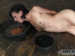 That honey has a bowl with water and one with food. Elise was a total doxy and now she's treated like one. Look at her how this honey struggles to eat and mostly of that food is on her face. What a immodest whore, this honey merits greater quantity punishment for her manners. But 1st this honey needs some greater quantity humiliation, let's see her play.