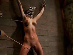 See this whore as that hottie is fastened on the wall and has a bag on her head. This babe is suffocating sluggishly and to increase the fun of being dominated they punish her sexy body by thrashing her on the thighs and belly with a stick. After thrashing that hottie gets a vibrator on her cunt and groans with fun and pain. She's so sexy with those clamps on her hard nipps and, will they add greater amount weights?