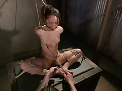 Kristina loves to sit comfortable and that babe was a fucking floozy with no respect until this fellow putted his paws on her. Now she's all tied up has clamps on her nipps that are pulling those small love bubbles and a ball is used to gag her pretty mouth. Kristina sits there and receives whipped and punished, that babe merits it.
