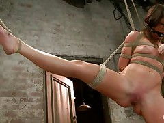 With weights added to her big nipples, sexually excited milf Mia Gold is tied up and has one leg in the air for a more good cookie domination. Having her face hole gagged, this babe can only moan. Her dominatrix-bitch sticks a big marital-device in that juicy cookie of hers and a sex toy on her clit to drive her crazy. Will this babe cum soon?